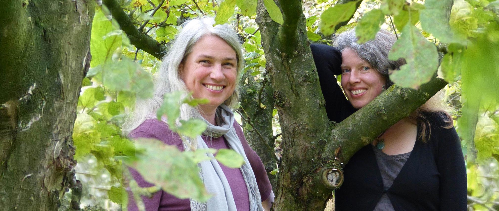 Duo PiaCello Angelika Bönisch und Dorit Kohne Oldenburg