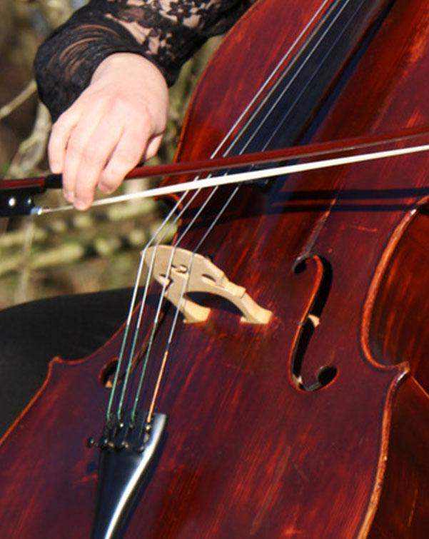 Cello-Unterricht in Oldenburg Angelika Bönisch